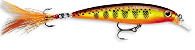 Rapala X-rap 06 Fishing Lure 25-inch Hot Mustard Muddler from Rapala