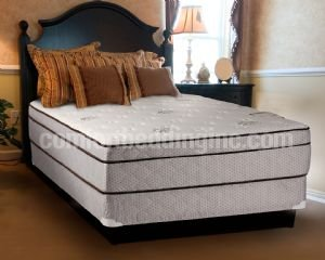 Fifth Ave Foam Encased Eurotop Queen Mattress And Box Spring Set