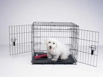 Four Paws Dog Crate front-1078090