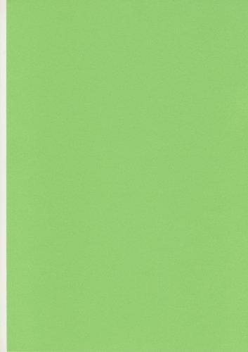 dark-green-a4-coloured-craft-card-160gsm-x-50-sheets