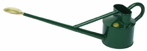Watering Can - Professional Galvanised Long Reach - Green 4.5lt