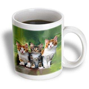 3dRose Three Little Kittens - Ceramic Mug, 15-Ounce (mug_5773_2) (Kitten Pics compare prices)