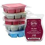 Scentsy 6 Pack Bundle - Favorites Collection