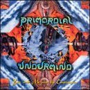 You Me and the Continuum by Primordial Undermind (1997-11-15)