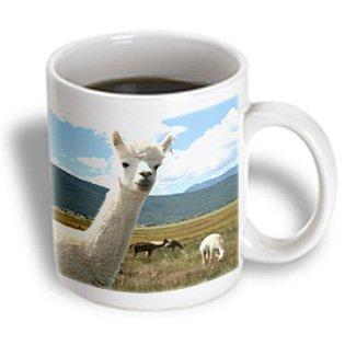 3Drose Victory Ranch Alpaca Farm, Mora, New Mexico Us32 Jmr0359 Julien Mcroberts, Ceramic Mug, 11-Oz