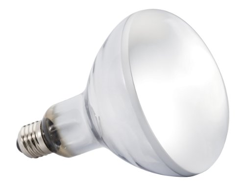 glo high intensity self ballasted uv heat mercury vapor lamp 125 watt. Black Bedroom Furniture Sets. Home Design Ideas