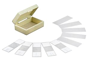 AmScope 10 PC Prepared and Blank Microscope Glass Slides