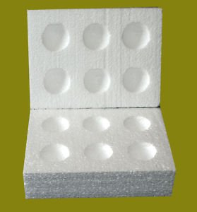 20 Polystyrene Egg Boxes Hatching Eggs All Sizes-Large