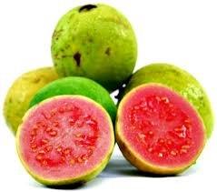Pink Flesh Guava