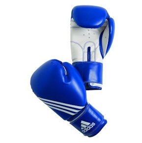Adidas 'TRAINING' Boxing Gloves, 12 oz [Misc.]