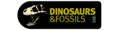 Dinosaurs and Fossils Ltd