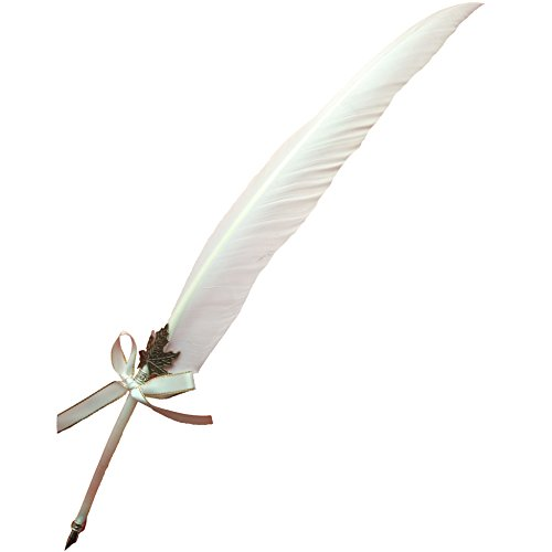 AWESOME Vintage Feather Quill Pen Deluxe Natural Swan Fountain Pen Nib Calligraphy Writing Quill Pen 9 Colors | White