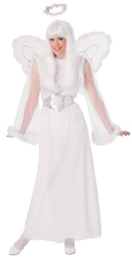 Snow Angel Costume - Adult Std.