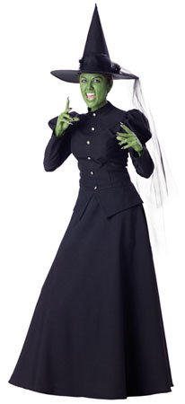 Witch Costume - X-Large - Dress Size 16-18