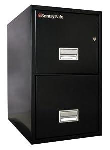"16.6"" W x 25"" D 2-Drawer Fireproof Key Lock Letter File Safe Finish: Black"