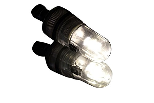 Led Balloon Lights - Batteries Included - Warm White