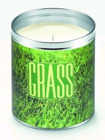 Aunt Sadie's Panoramic Fresh Cut Grass Scented Candle