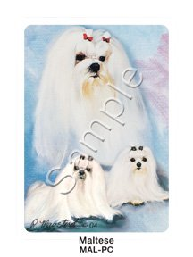 Best Friends Playing Cards, by Ruth Maystead - Maltese - 1