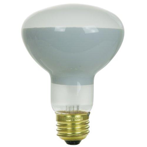 Sunlite 100R25/FL Incandescent 100-Watt, Medium Based, R25 Reflector Bulb, Frost