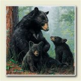 AbsorbaStone Coaster set~ Black Bears ~4 Tile Drink Coasters ~ code 259C