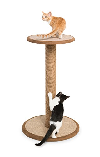 Prevue Pet Products Kitty Power Paws Tall Round Post with Platform, Natural Prevue B00WO6MFCO