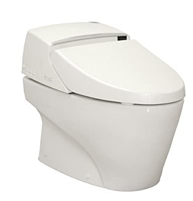 Marvelous Shopping Toto Ms990Cgr 01 Neorest Elongated Toilet And Cjindustries Chair Design For Home Cjindustriesco
