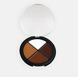 Sixplus 4 Color Concealer Palette Medium Skin Tones Make up Concealer