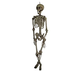 Costumes For All Occasions Pe42022 Hanging Skeleton 60In