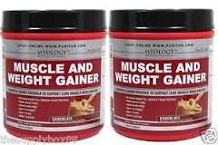 Muscle & Gainer chocolat - poudre 1,5 lb de