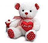 "Valentine's Day ""I LOVE YOU"" Red & White Teddy Bear Plush"