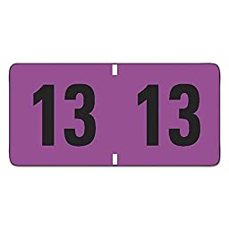 Jeter-Compatible Year 2013 Labels, 3/4 x 1-1/2, Purple/Black, 500/Roll