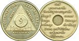 9 Month Bronze AA (Alcoholics Anonymous) - Sober / Sobriety / Birthday / Anniversary / Recovery / Medallion / Coin / Chip