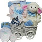 Babies First Carriage Gift Basket in Baby Girl Pink or Boy Blue