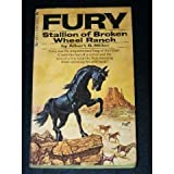 Fury: Stallion of Broken Wheel Ranch