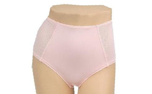 Breezies Hampton Mesh Inset Brief Panty W/patented Ultimair