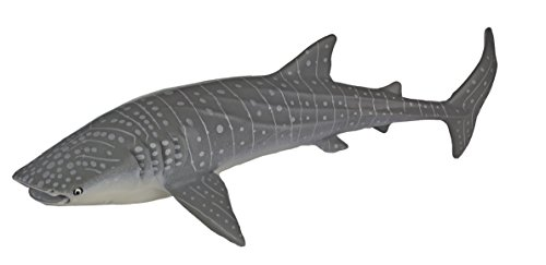Monterey-Bay-Collection-Whale-Shark-Adult