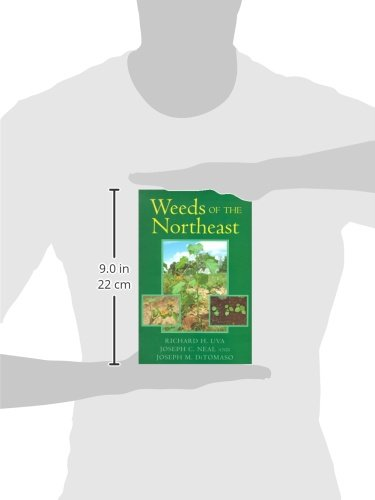 Weeds of the Northeast the Crusader, the Movie, and the Soul of the Port of New York (Comstock books)
