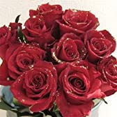赤いバラのラメ入り花束 ゴールデンレッド 金色のラメ付きキラキラ 100本 【生花】【お祝い】記念日】【誕生日】【フラワーギフト】【バラ】