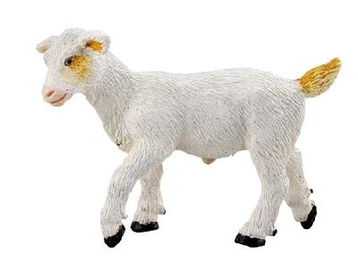 WHITE KID GOAT by Safari, Ltd. - Buy WHITE KID GOAT by Safari, Ltd. - Purchase WHITE KID GOAT by Safari, Ltd. (Safari, Toys & Games,Categories)