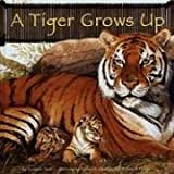A Tiger Grows Up (Wild Animals)