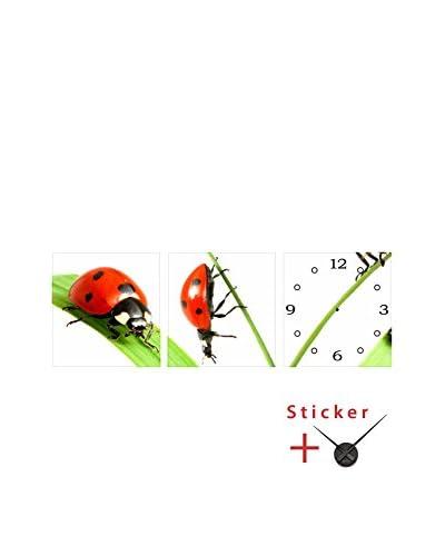 Ambiance Live Vinile Decorativo 3 pezzi Ladybirds (Clock)