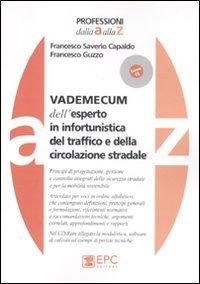 Vademecum dell'esperto in infortunistica del traffico e della circolazione stradale