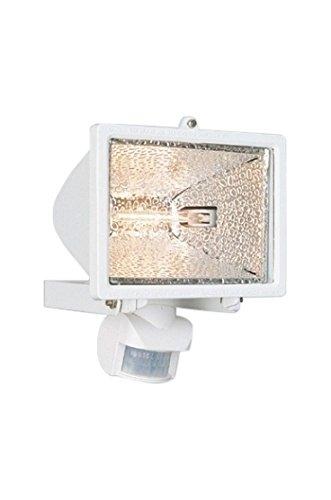 Philips 749438131 Promo Spot de Jardin/Projecteur Blanc 1 x 300