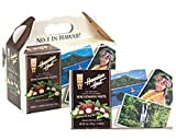 Hawaiian Host Chocolate Covered Macadamia Nuts 6 / 7oz Boxes