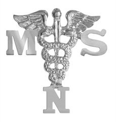 nursingpin-masters-de-la-ciencia-en-msn-de-lactancia-pin-de-enfermera-de-graduacion-en-plata