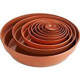 1 X Terracotta Saucer 10 Cm Ward Terracota Saucer 10cm (4