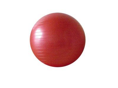 バランスボール 65cm エクササイズ ダイエット トレーニング 空気入れ付き (レッド)