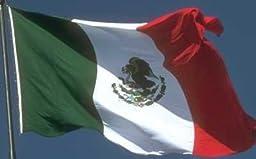 Cinco De Mayo Mexican Pride Flag 12\