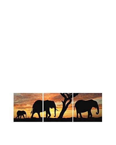 LO + demoda canvas afbeelding 3 stuks . Set Sabana Elephant