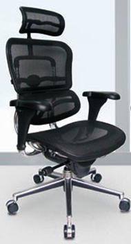 Ergohuman mesh chair with headrest